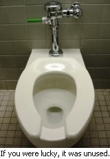 A Toilet, fortunately unused